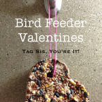 Bird Feeder Valentines