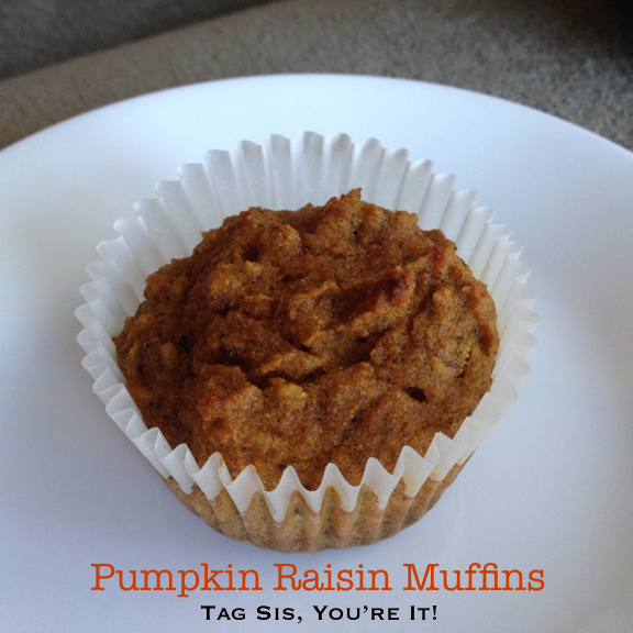 The Muffin Project 2.0 | Tag Sis, You're It!